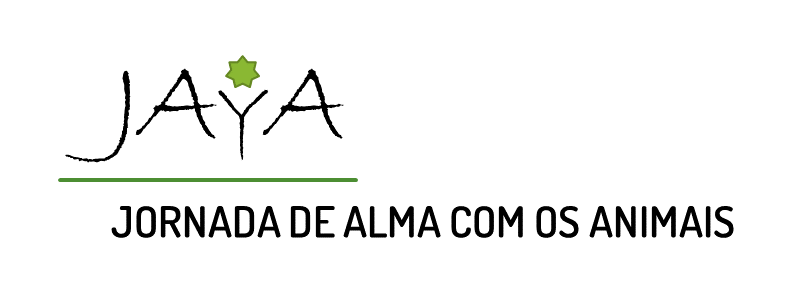 JORNADA DE ALMA COM OS ANIMAIS